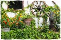 starocie w ogrodzie zogrodemnaty1