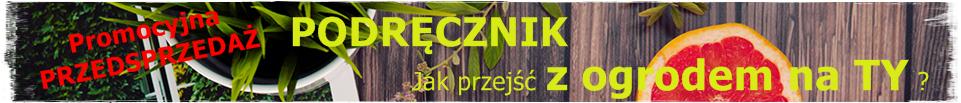 wyniesienie projektu ogrodu zogrodemnaty36