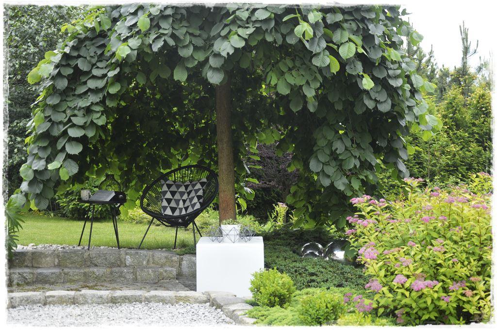 kacik wypoczynkowy w ogrodzie