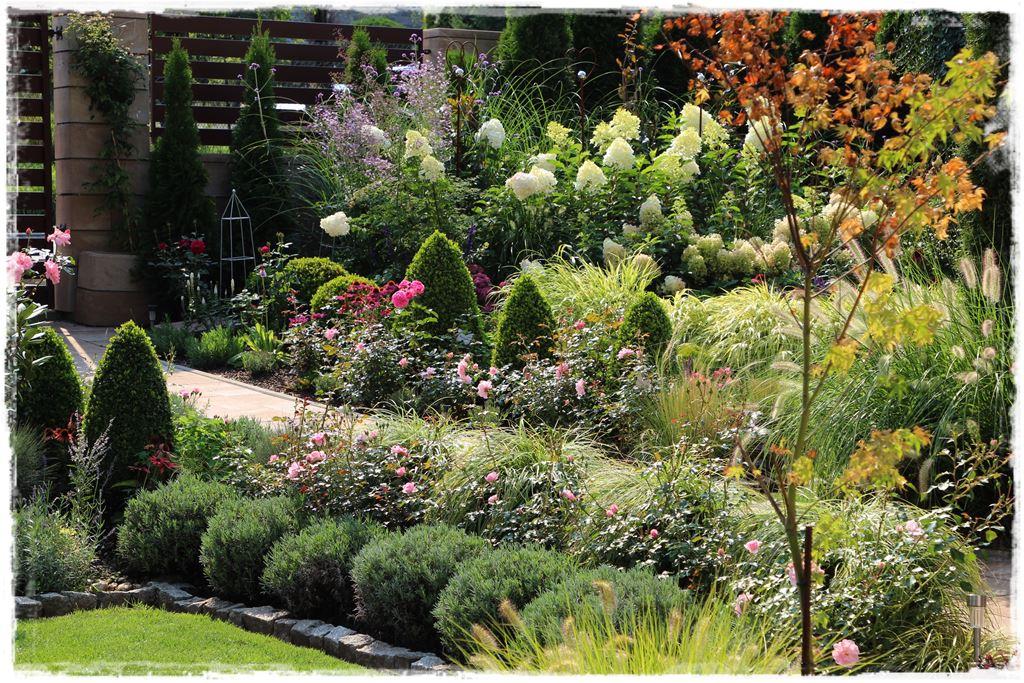 Jak Urzadzic Ogrod Przed Wejsciem Do Domu Z Ogrodem Na Ty
